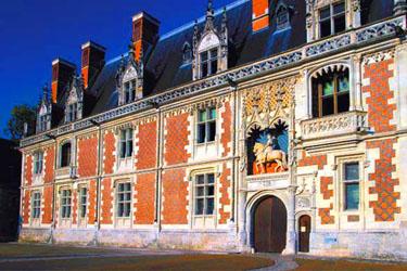Il Castello di Blois nella Loira