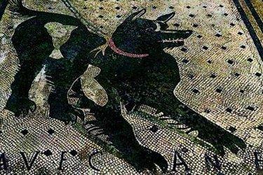 Il Mosaico del Cave canem a Pompei