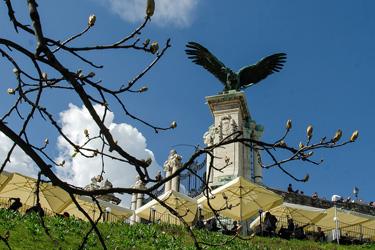 Il rapace Turul nel Palazzo Reale di Budapest