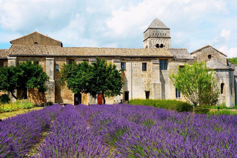 Provenza guida della provenza informazioni sulla provenza for Entretien jardin st remy de provence