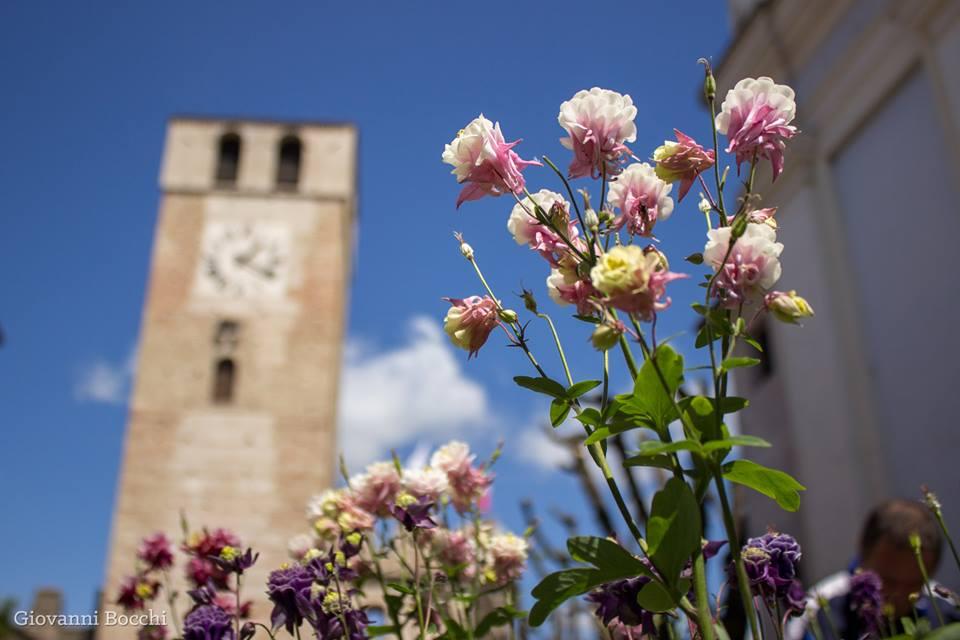 Borgo in fiore a Castellaro Lagusello