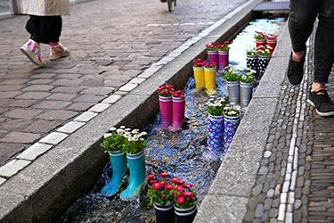 I Bächle, i canaletti d'acqua di Friburgo