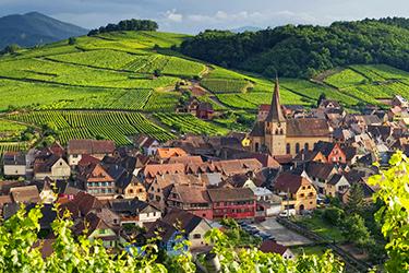 La strada dei vini in Alsazia