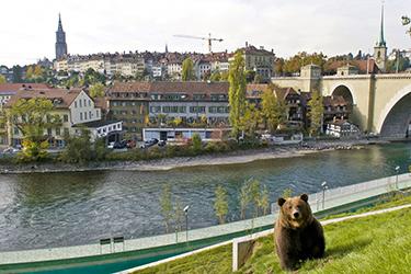 Il Parco degli Orsi e lo Zoo di Berna -Foto bern.com