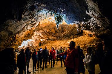 Le grotte di Postumia - Postojnska jama