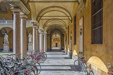 L'Università di Pavia